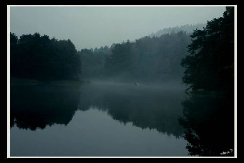 by ♡Gosia M more: http://xgosia-mx.tumblr.com   &   https://www.facebook.com/gosiamphoto  #gosiam #lake #fog #forest #dark #evening #wood