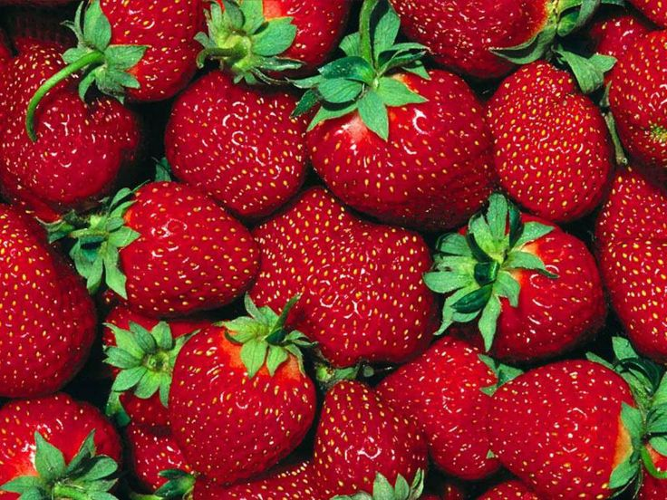 Google Image Result for http://images2.fanpop.com/images/photos/6100000/Strawberry-Wallpaper-fruit-6102247-1024-768.jpg