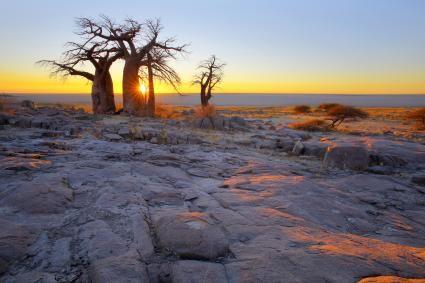 Desert Facts for Kids | LoveToKnow | Desert facts, Facts ...