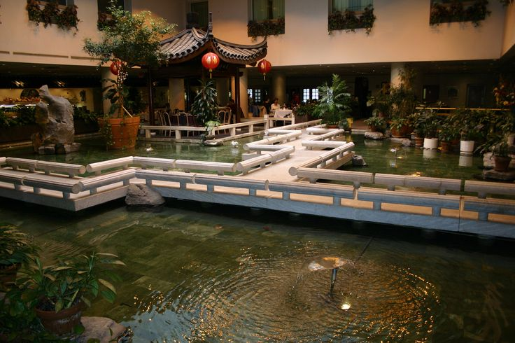 35 best images about indoor pond on pinterest gardens for Indoor fish pond ideas