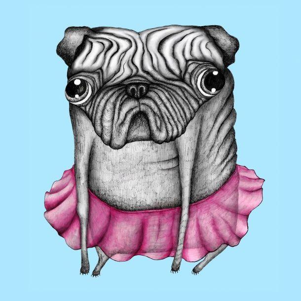 Emelie Gårdeler Pug Funny Comedy T-Shirt in Sky Blue   Tshirt Store Online - Tshirt Store Online