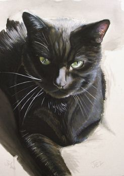 http://www.jenny-mann.com/images/gallery/pet%20portraits/black%20cat%20portrait%20moggy%20watercolour%20crayon%20reddiotch%20mann%20made%20art%20jenny%20mann.jpg                                                                                                                                                                                 More