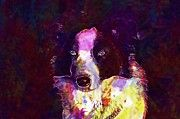 "New artwork for sale! - "" Dog Head Border Collie Animals  by PixBreak Art "" - http://ift.tt/2h2HNU9"