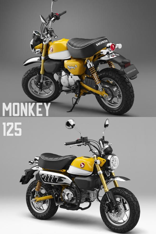 2019 Honda Monkey 125 Std Scrambler Cafe Revealed World Wide