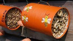 Insektenhotel aus Dosen basteln – Nisthilfe für Wildbienen