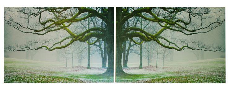 tree-prints
