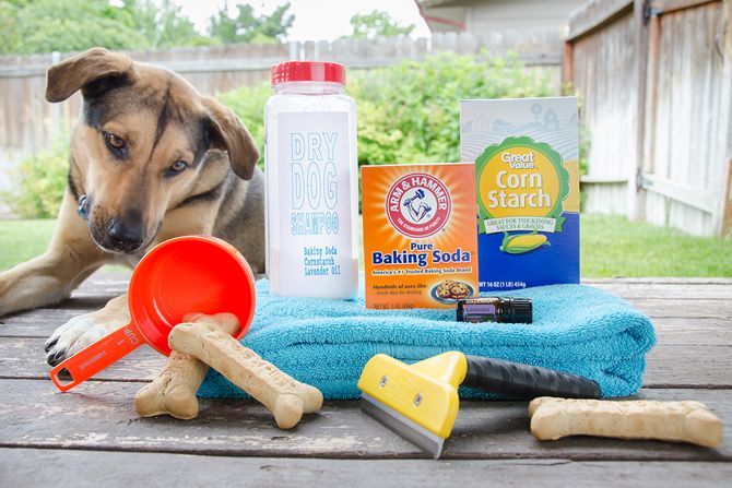 how to make your own natural dog shampoo