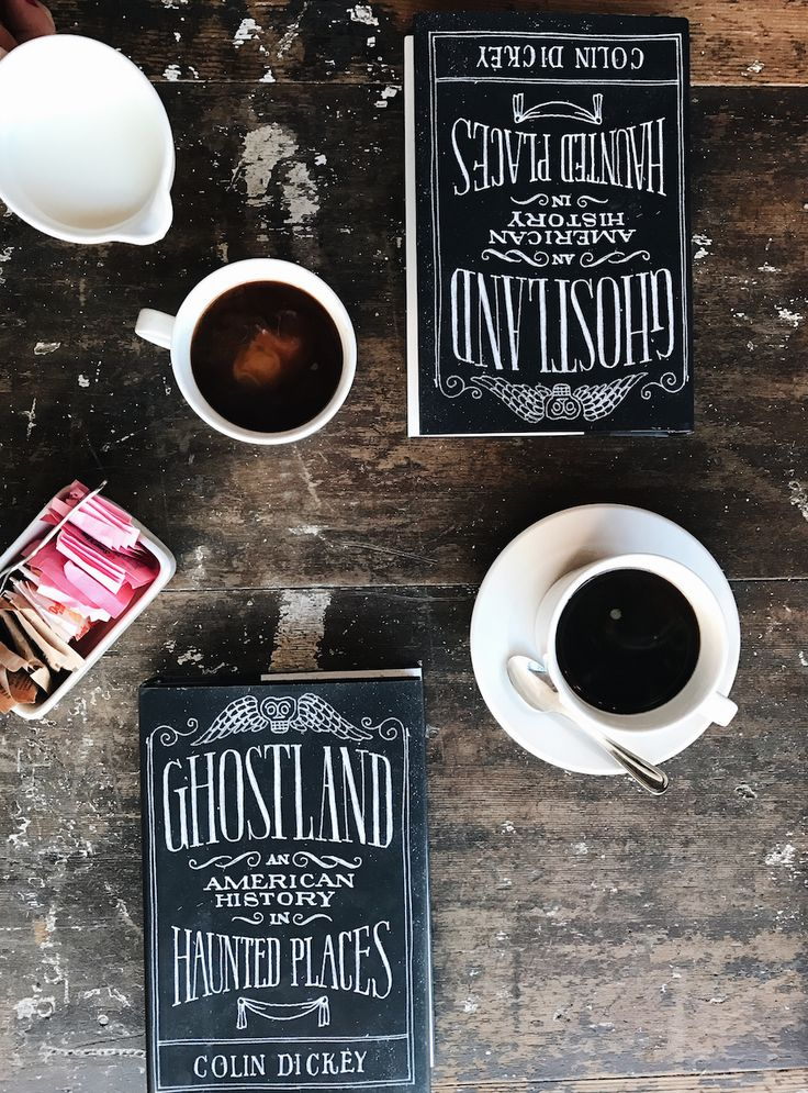 An intellectual feast for fans of offbeat history, Ghostland takes readers on a road trip through some of the country's most infamously haunted places–and deep into the dark side of our history.