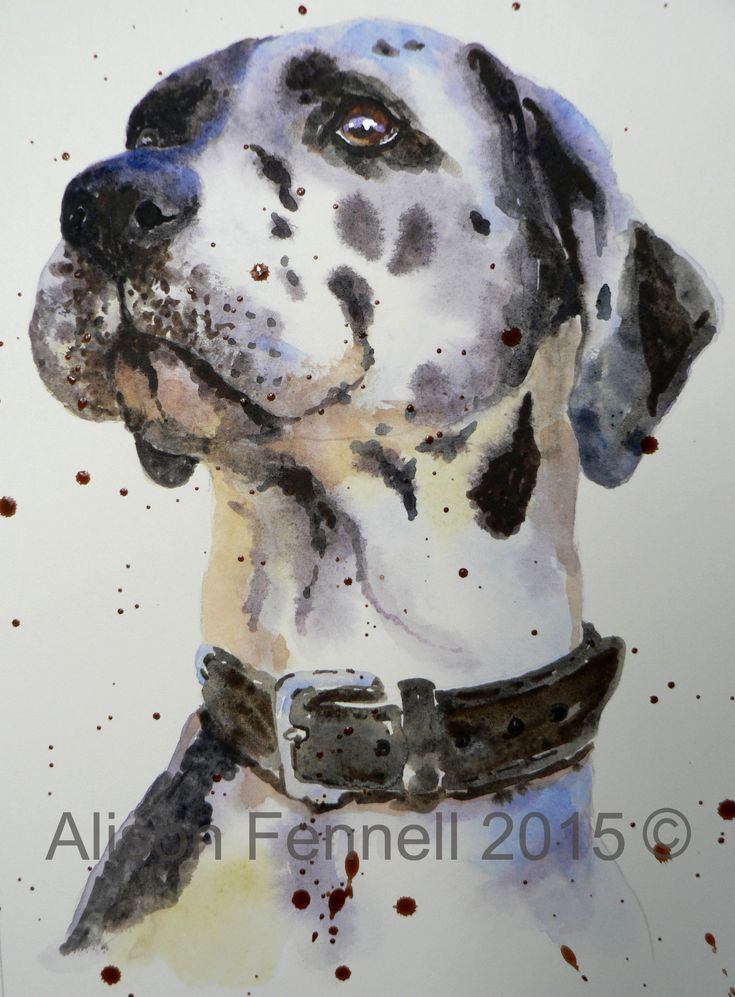 Painting Dogs in Watercolour - Great Dane Tutorial