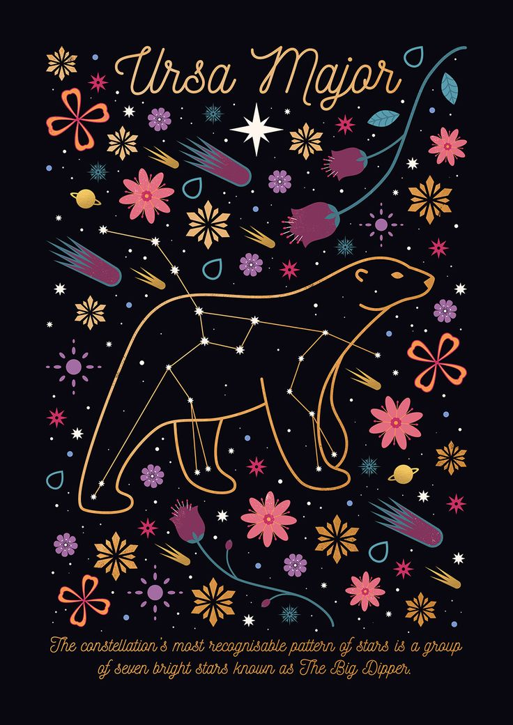 Carly Watts Illustration: Ursa Major #stars #bear #constellation #astronomy #space #flowers #gold