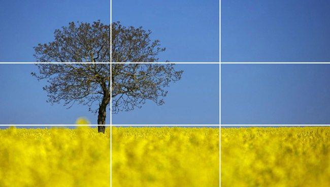 5 Komposisi Gambar Teknik Sinematografi untuk Video yang Lebih Oke