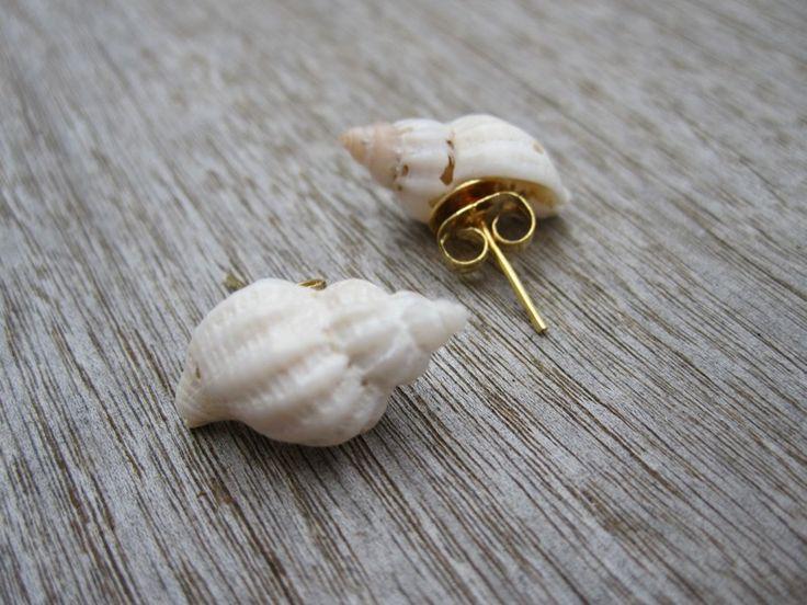 Sea shell pin earrings!