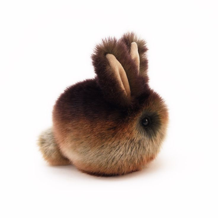 best 20 faux bun ideas on pinterest kanekalon hair caveman keto and simple natural hairstyles. Black Bedroom Furniture Sets. Home Design Ideas