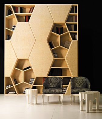 bookshelves as art