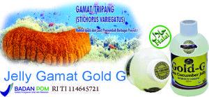 Pencegahan radang tenggorokan kronis dengan Jelly Gamat Gold G, solusi tepat yang ALAMI tanpa efek samping, Pesan disini - bisa KIRIM BARANG DAHULU BARU TRANSFER PEMBAYARAN