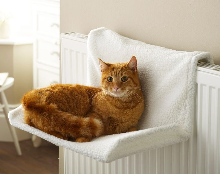 This radiator bed is an ideal and comfy place for your cat to sleep. It has a strong metal frame and a warm comfy cover which will provide comfort for your cat. Can be easily attached to any modern, oil filled radiator. Cover is machine washable. W45 x D32 x H25cm. Polyester