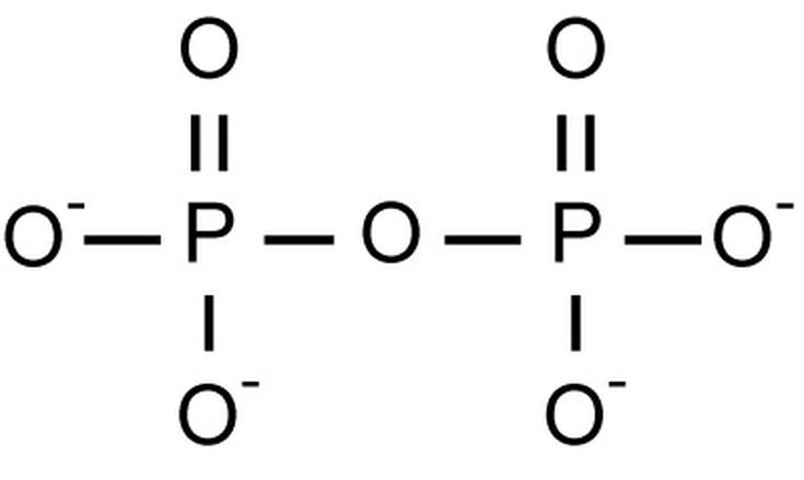 What Is a Polyatomic Ion?