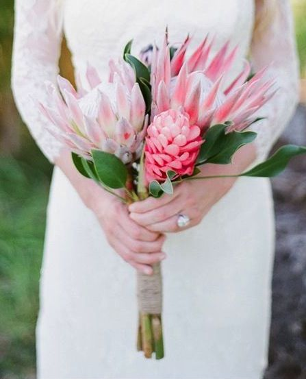 Protea and ginger bouquet, love this soft looking combo!