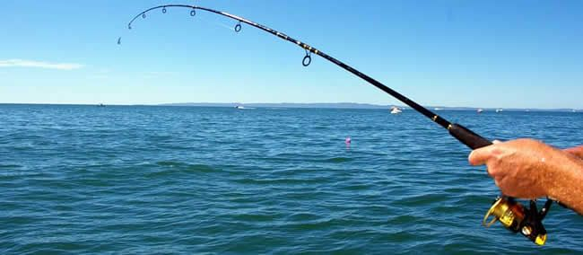 509 best images about saltwater fishing on pinterest for Saltwater shore fishing tips