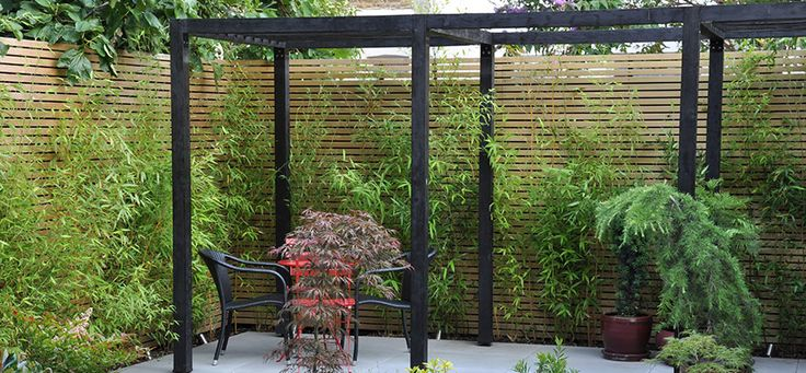 Screening and  modernize your garden with bamboo