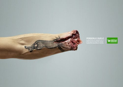 Perderlo duele(Lose it hurts).| Crude Ads | This terrifying... Crude Arts Green Campaign Advertisement Awareness Uncensored Reader Discretion Advised Enviromental Campaigns