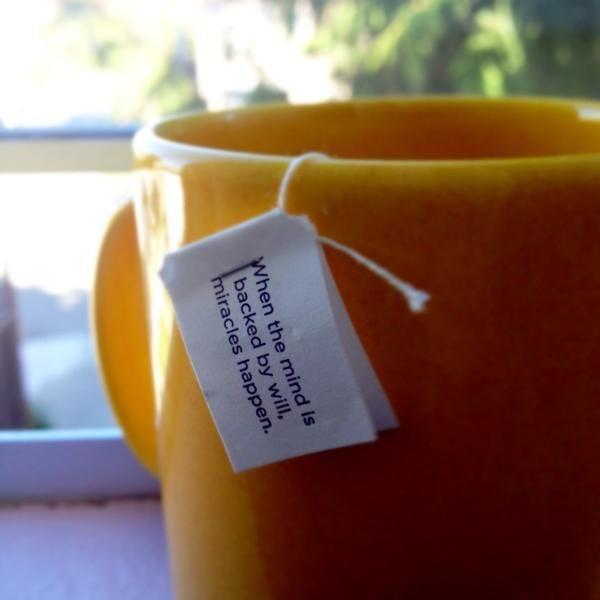 Yogi Tea FTW!