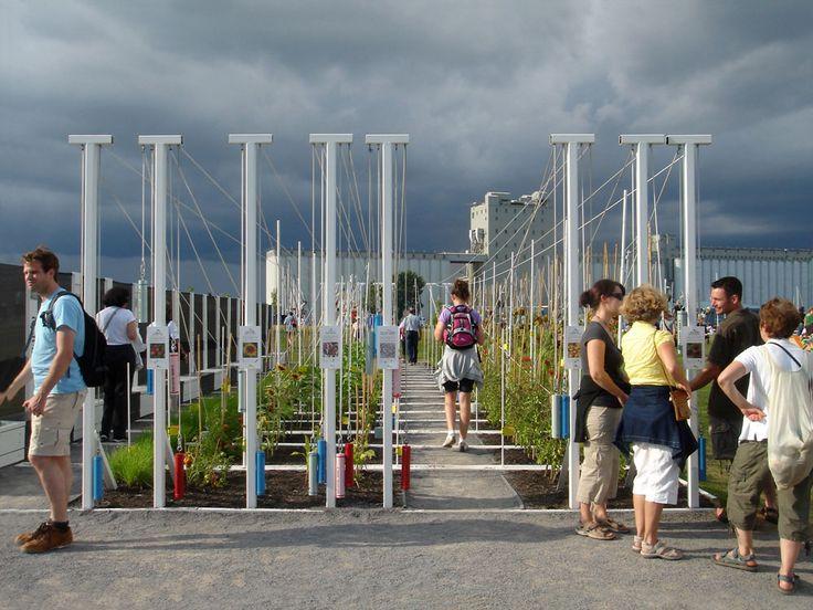 Boustrophedon Garden by PLANT Architect
