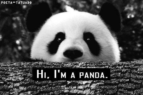 Pandas ¤_¤