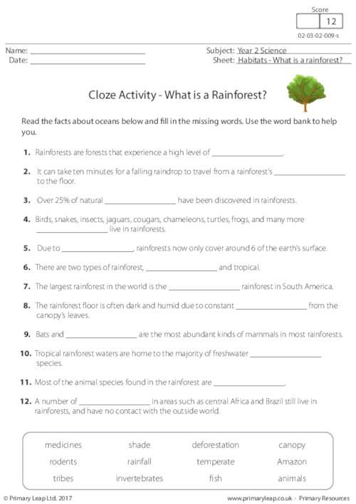 PrimaryLeap.co.uk - Cloze Activity - What is a Rainforest? Worksheet