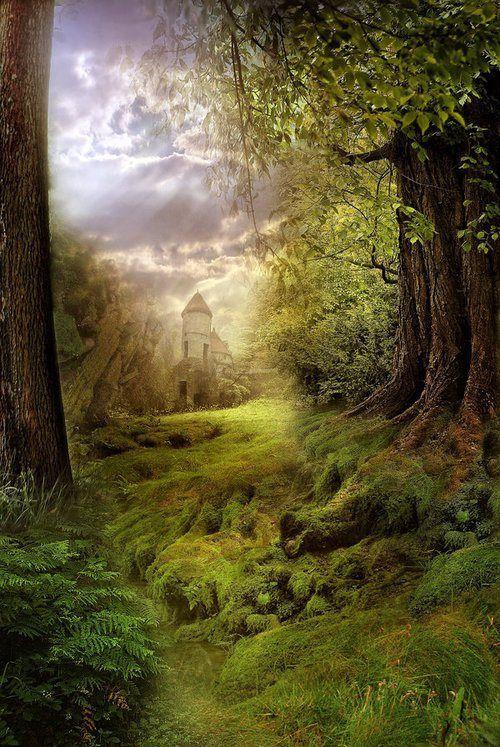 "crescentmoon06: "" Castle, the Enchanted Wood """