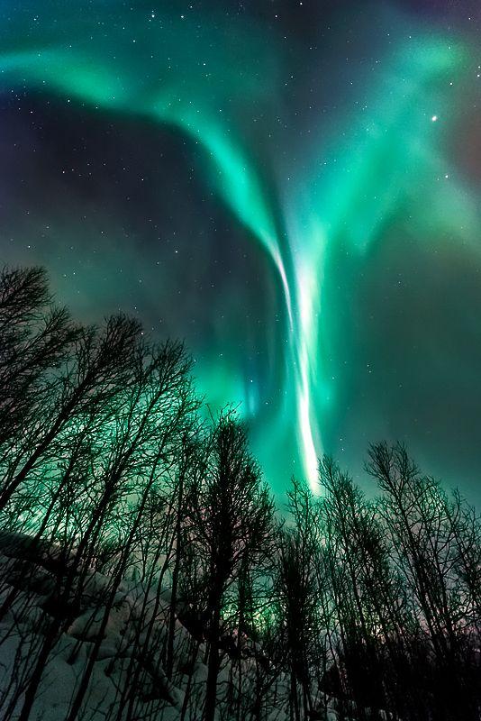 Angel, Aufnahmen Zeigen, sørkjosen, troms county, northern Norway.