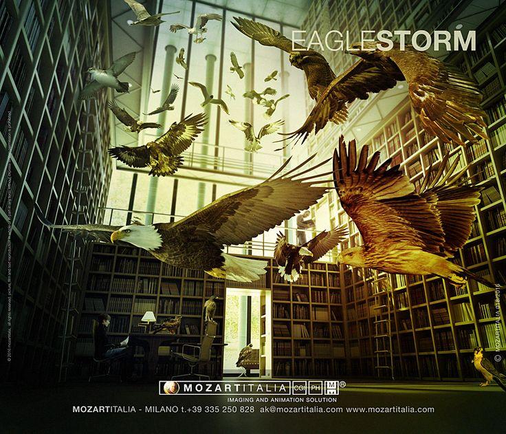 eagle storm mozartitalia.com