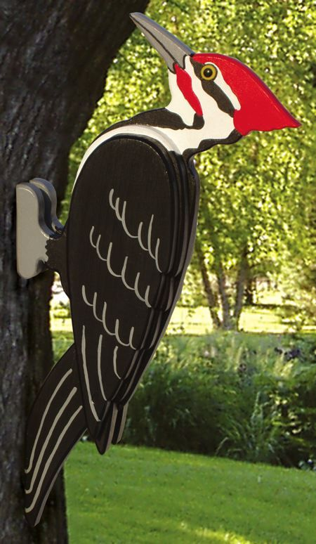 19 W3059 Pileated Woodpecker Woodworking Plan Дятлы