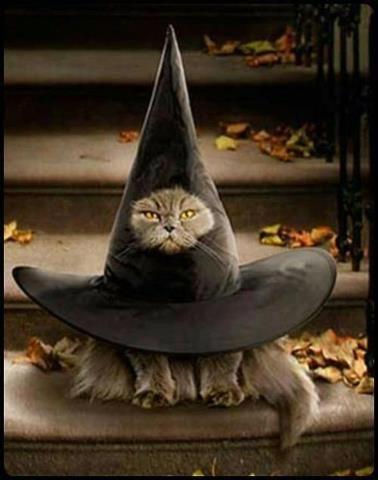 Halloween hell..lol