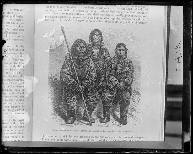 Tigianniak, Paingu and Nuggasak