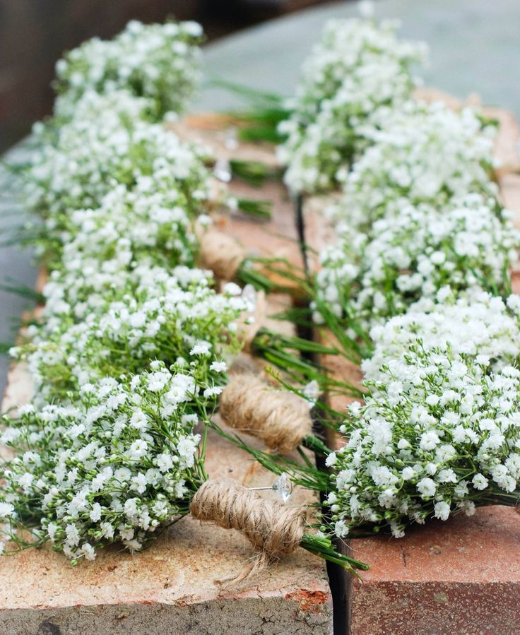 Babys breath buttonholes by scent a posy babys breath