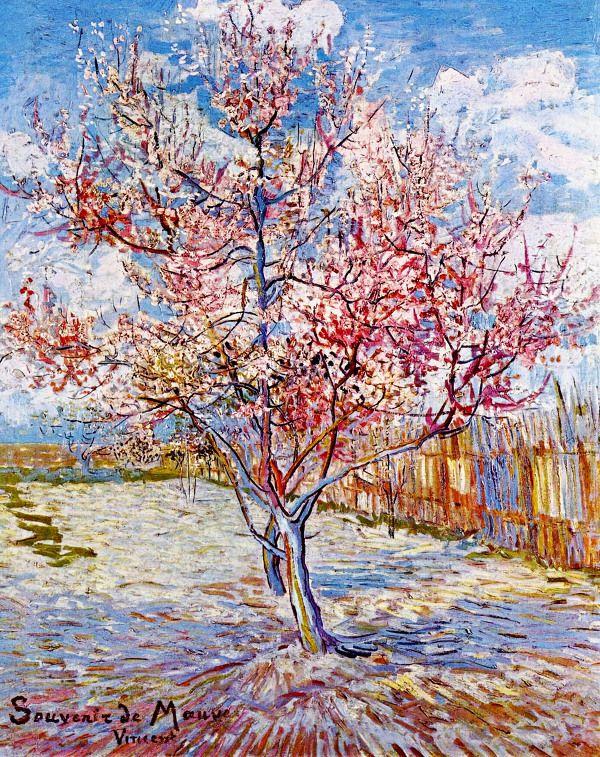 빈센트 반 고흐(Vincent Van Gogh)의 생명을 상징하는 나무 그림들 : 허브줌