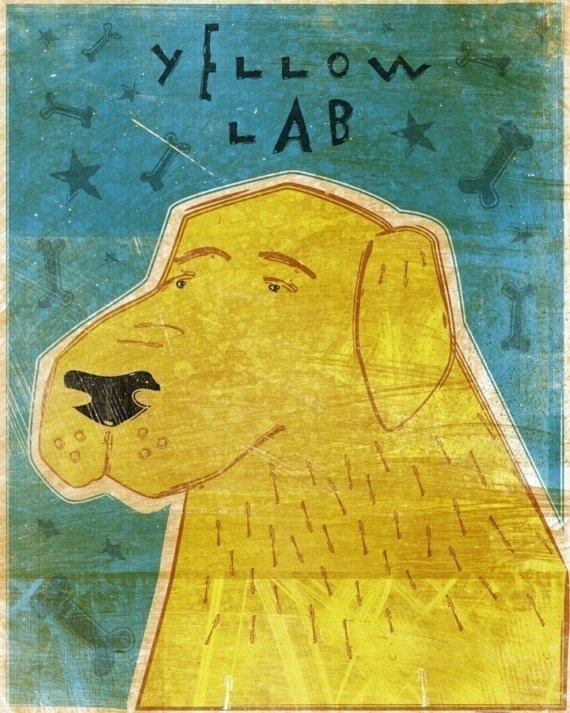 Yellow Labrador Retriever dog art portraits, photographs, information and just plain fun. Also see how artist Kline draws his dog art from only words at drawDOGS.com #drawDOGS http://drawdogs.com/product/dog-art/yellow-labrador-retriever-dog-portrait-by-stephen-kline/ He also can add your dog's name into the lithograph.