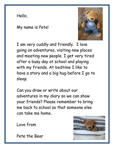 Class teddy bear diary instructions