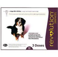Ear Mite Treatment Dogs