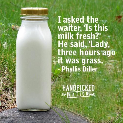 milk -- handpickednation.com