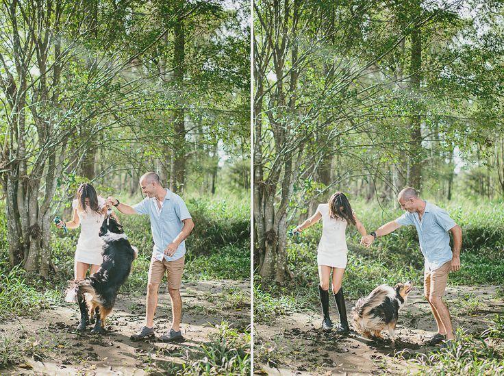 #engagement #wedding #couplesshoot #bride #bridetobe #groom #groomtobe #inlove #wearethetsudons #photography #engagementphotoshoot #weddingphotography #farm #goldcoast #gettingmarried #tree #hinterland #bordercollie #collie #river #mud