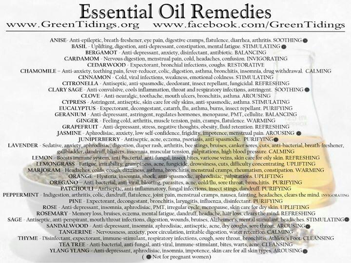 image regarding Essential Oils Chart Printable called Crucial Oil Intake Lead