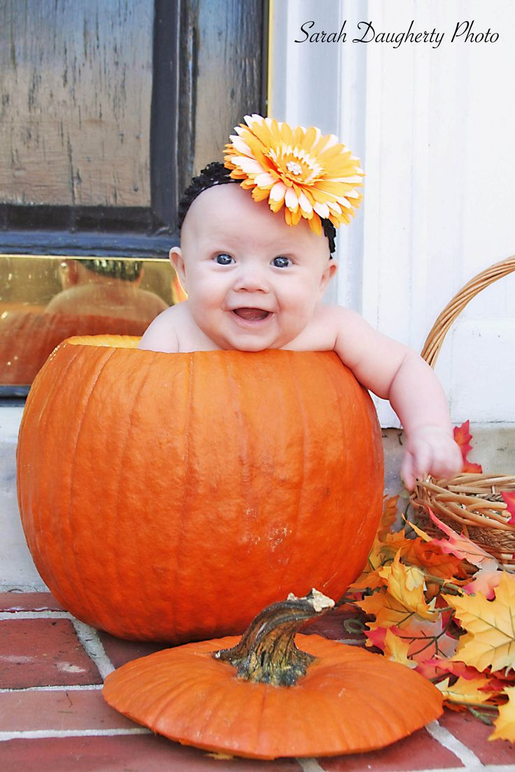 Best Fall Baby Photos Ideas On Pinterest Fall Pictures Kids - 24 hilarious baby photoshoot pinterest fails 9 made my entire day