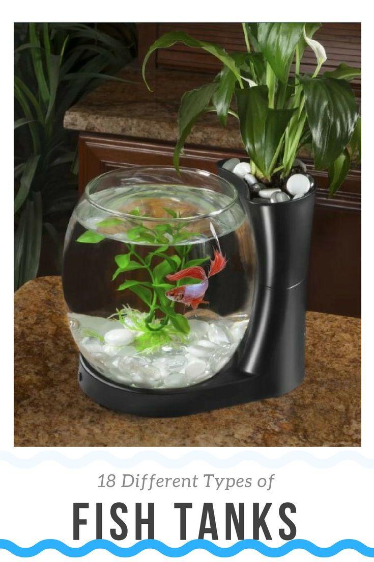 22 Different Types Of Fish Tanks Buying Guide Fish Tank Aquariums For Sale Aquarium