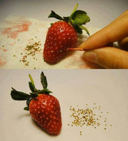Grow strawberries from strawberries