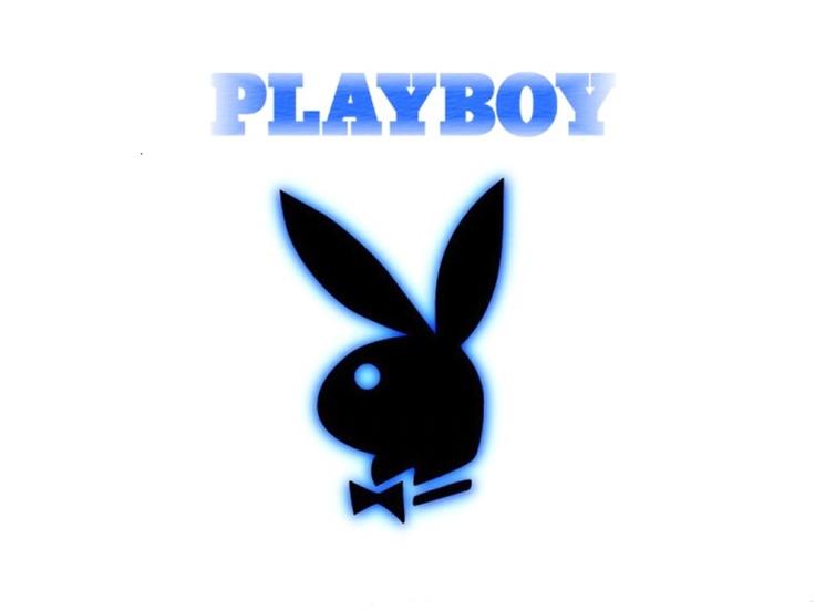 29 best bunny images on pinterest
