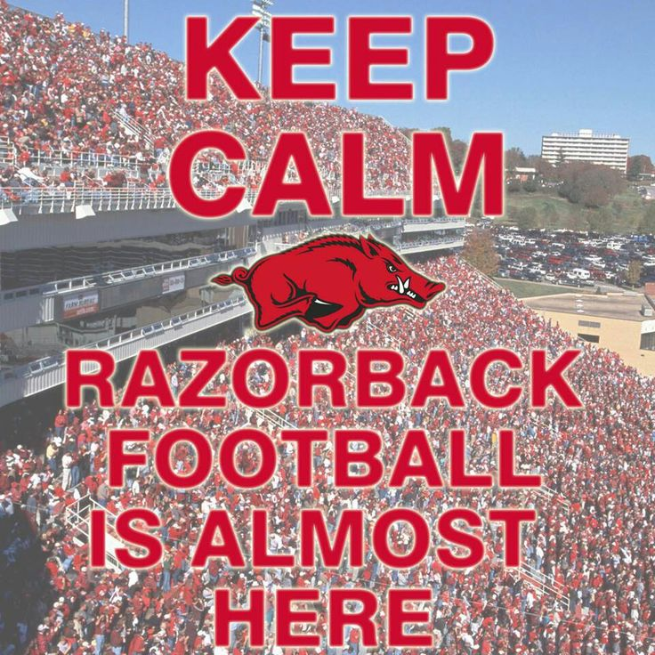 Razorback Classroom Decor : Best hog board images on pinterest arkansas