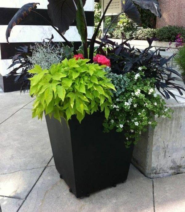Inexpensive Landscape Ideas | Home Art, Design, Ideas and Photos  RepoStudio.org