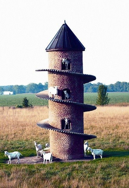 """""""goat castle! I want one in my back yard.  if I ever have a farm this is so cool.""""-a pinner"""